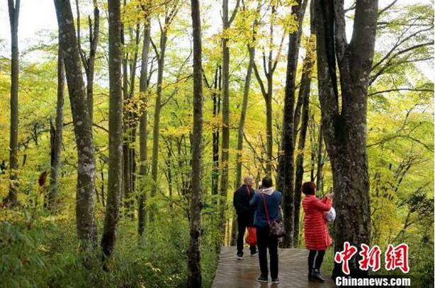国家级贫困县四川南江:用5年时间打造258个特色民俗村
